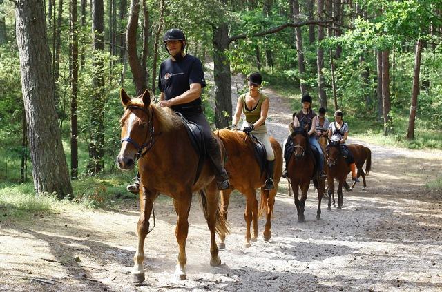 Hästridning. Rundresor till Polen – Hit The Road Travel