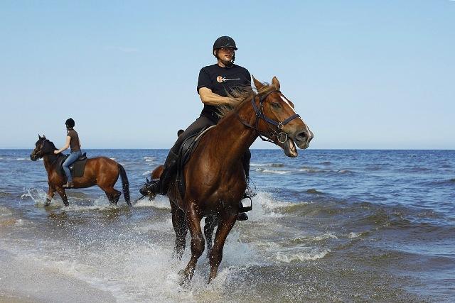 Hästridning. Aktivitetsresor till Polen, träningsresor till Polen – Hit The Road Travel