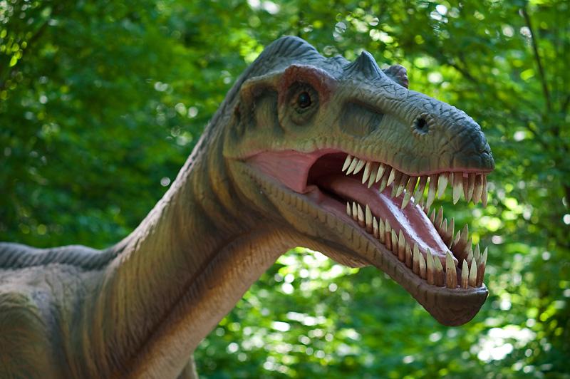 Dino Park i Malbork