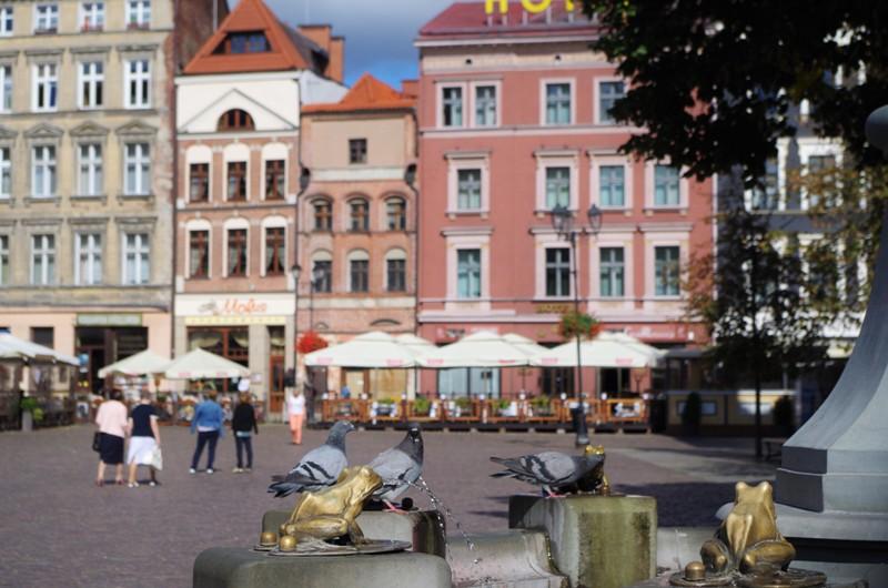 Gamla Torget i Torun. Historisk resa till Torun – Hit The Road Travel