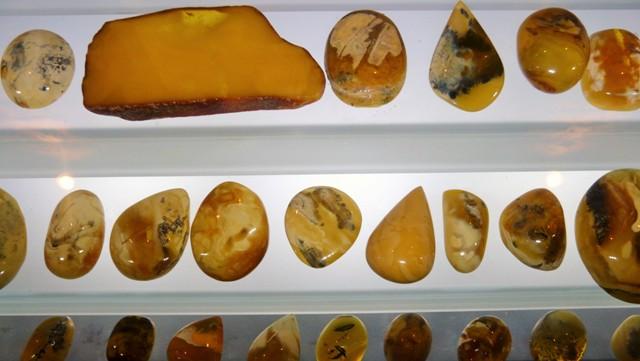 Bärnsten i olika färger och storlekar, Närnstensmuseum, Gdansk. Resa till Sopot, Gdansk och Gdynia – Hit The Road Travel