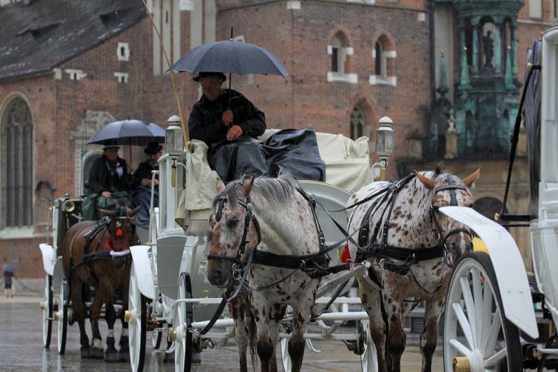Hästdroskor i Krakow. Resa till Krakow – Hit The Road Travel